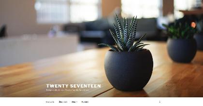Screenshot Twenty Seventeen